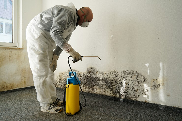 Mould Remediation in Vaughan