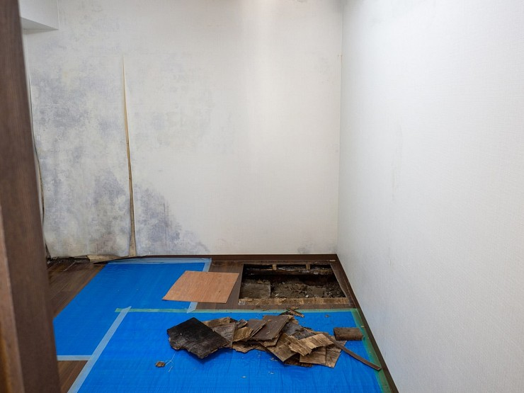 Mold Remediation in Markham