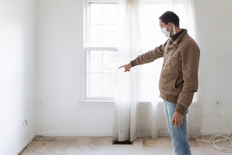 Mold Inspection - Burlington