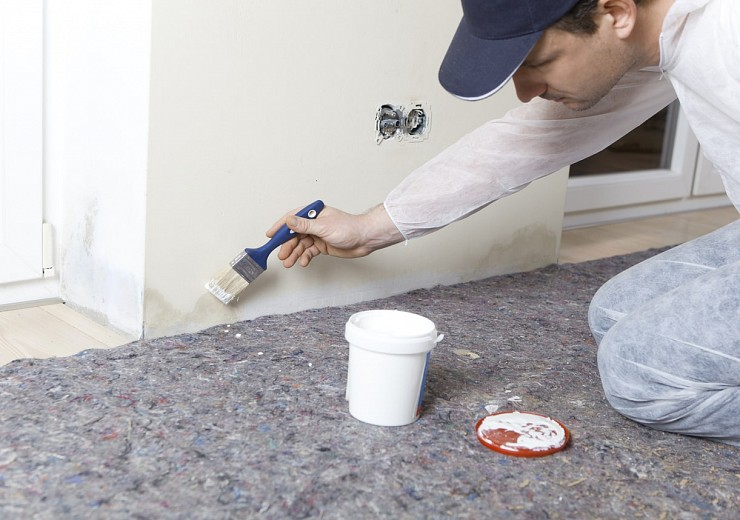Mold Remediation in Oakville