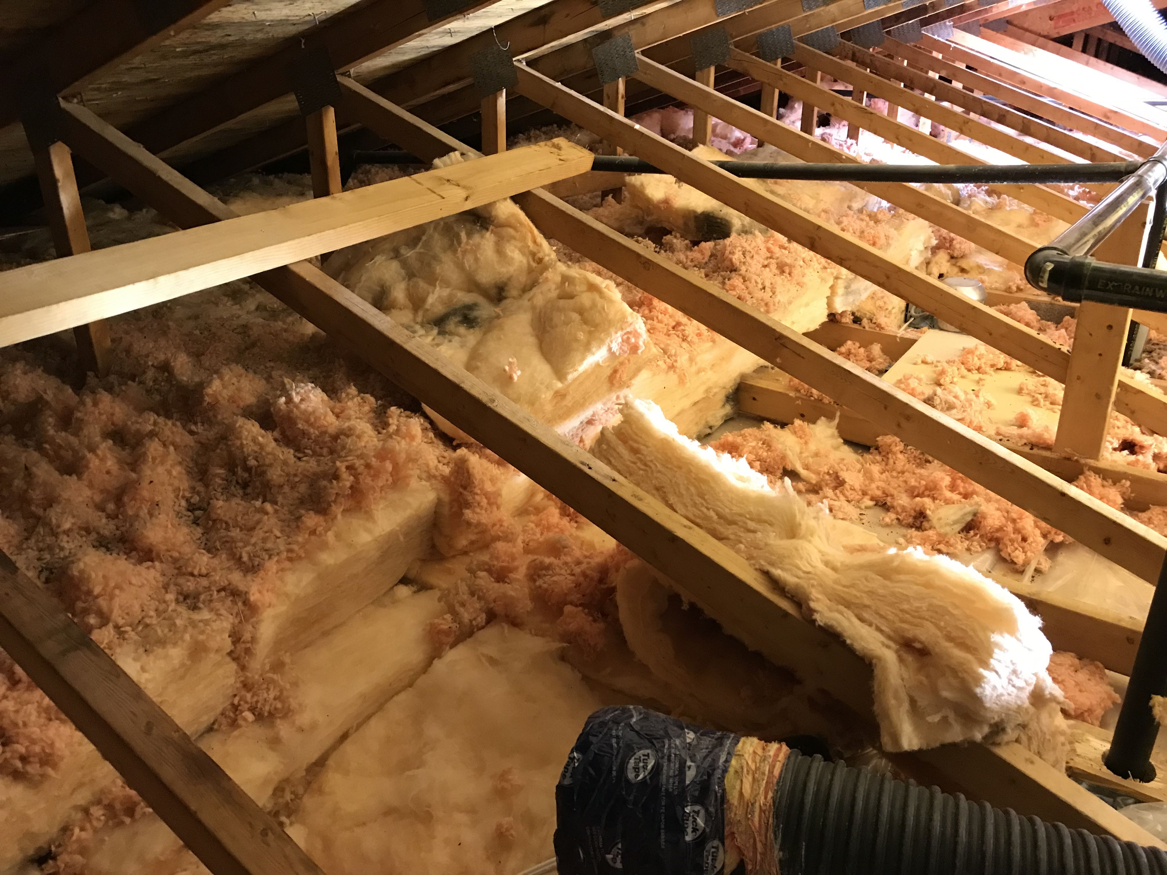 Four Seasons blown in attic insulation removal project