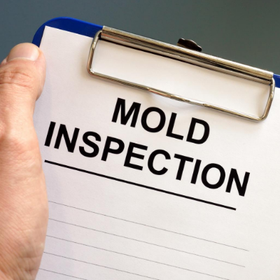 mold inspection in Missisauga