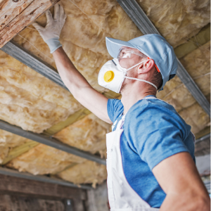 attic insulation removal mississauga